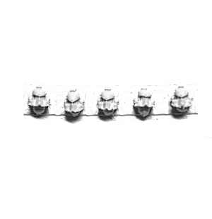 LEGION MKIV DESTROYER SQUAD HEADS